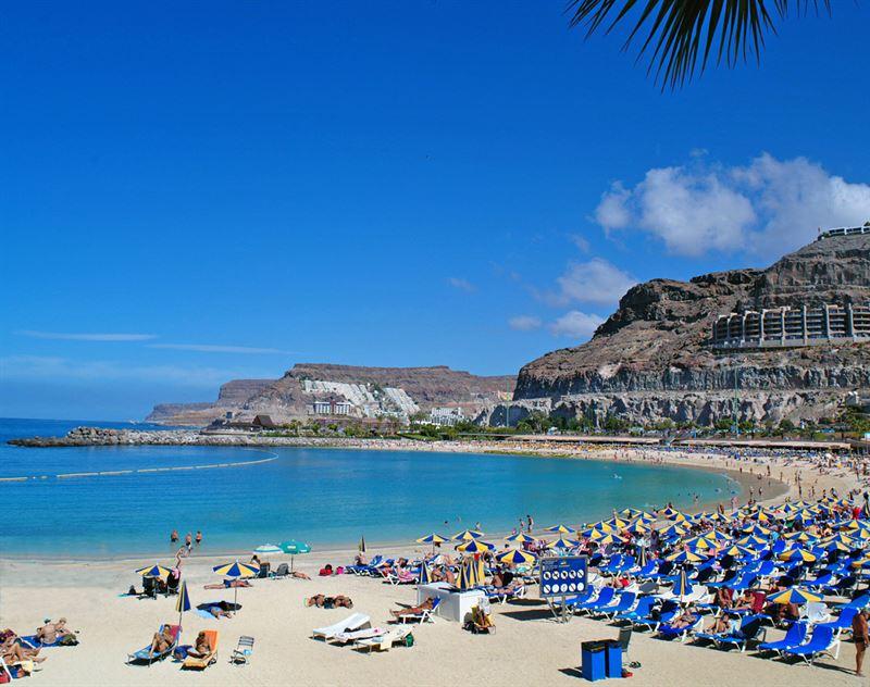 Playa Amadores Mogan